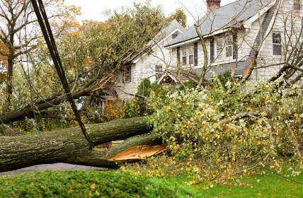 Storm damage restoration in Jasper by MRS Restoration