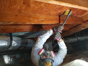 Crawl Space Mold Remediation in Smyrna, GA (5)