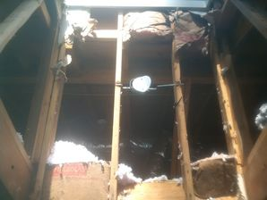 Damage Reconstruction in Smyrna, GA (2)